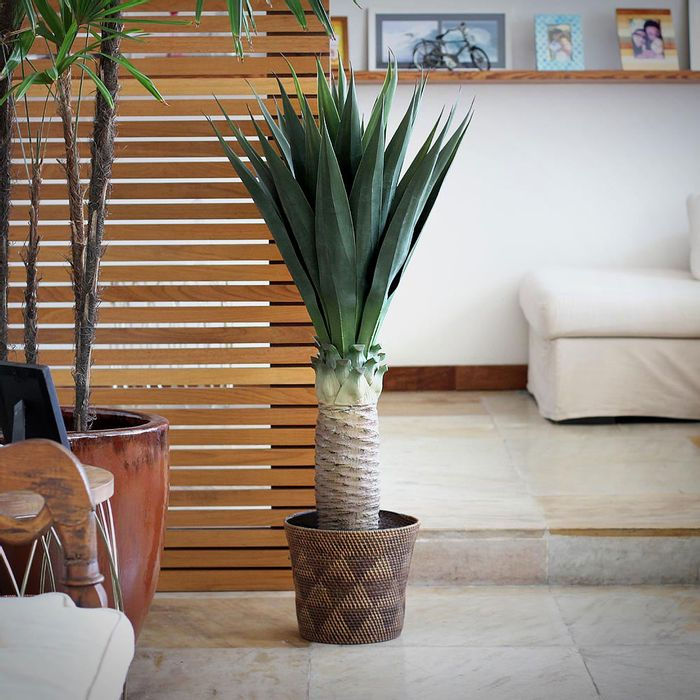 arvore artificial sisal